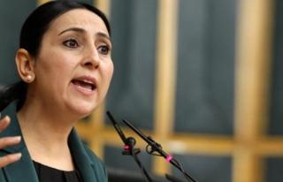 HDP Eş Genel Başkanı Figen Yüksekdağ tutuklandı