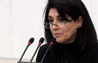 HDP'li Leyla Zana'nın milletvekilliği...