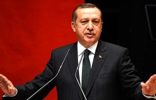 Erdoğan'dan flaş AP açıklaması