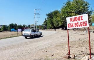 Osmaniye Valiliği: 104 kişinin kuduz vakası kapsamında...
