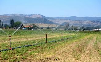 Tarım-GFE aylık yüzde 1,71 arttı