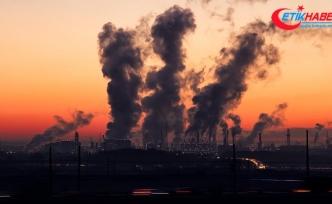 Çevresel tehdite karşı ortak çaba şart