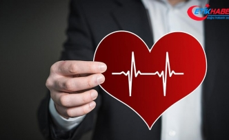 Kalp ve Damar Cerrahisi Uzmanı Prof. Dr. Sönmez: Kalbin yaz ve kış ayarı var