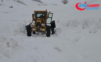 Doğu Anadolu'da 69 köy ve mahalle yolu kapalı