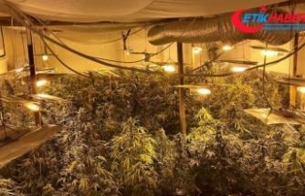 Polisin dikkati uyuşturucu imalathanesini ortaya çıkardı