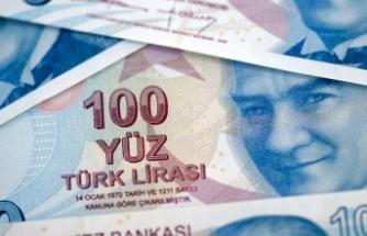 'Faiz kararı Türk lirasına yarayacak'