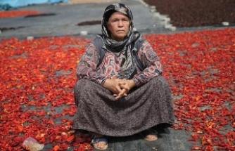 Şanlıurfalı kadınlar 'acıya' meydan okuyor