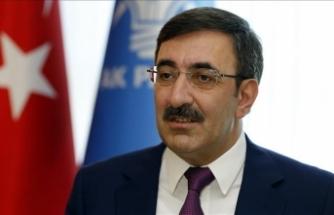 'Yurt dışındaki Türk vatandaşları bulundukları ülkede siyasete katılmalı'