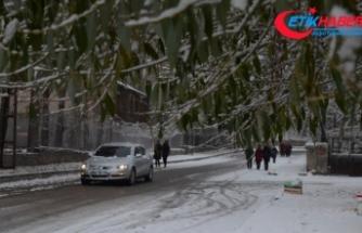 Doğuda yoğun kar yağışı uyarısı