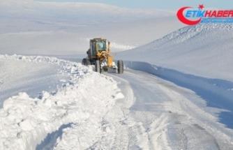 Doğu Anadolu'da kış: 44 yerleşim yerine ulaşım sağlanamıyor