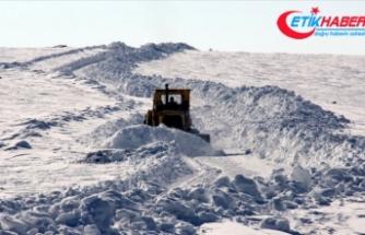 Doğu Anadolu'da 4 il için zirai don uyarısı