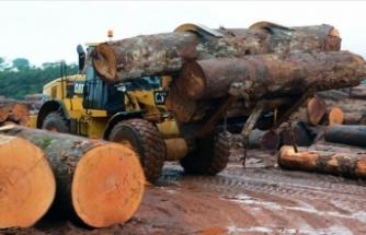 Mobilya, kağıt ve orman ürünleri ihracatında hedef 6 milyar dolar