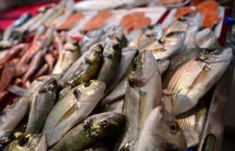 'Su ürünleri ihracatında 2023 hedefi 1,5 milyar dolar'