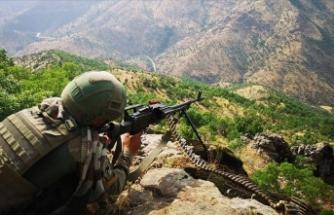 Tunceli'de bir haftada 11 terörist etkisiz hale getirildi