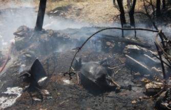 Depo ve ahır yangınında ev küle döndü, 1 inek telef oldu