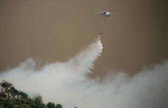 Şiddetli rüzgar orman yangınlarıyla mücadeleyi güçleştiriyor