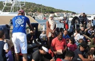 Ayvalık'ta 48 düzensiz göçmen yakalandı