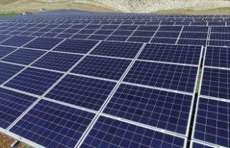 Yenilenebilir enerji kapasitesi 2024'e kadar yüzde 50 artacak
