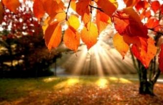 Bugün hava nasıl olacak? 12 Kasım yurtta hava raporu