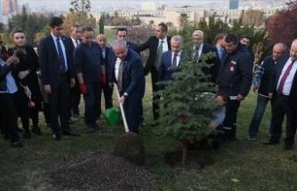 Şentop'tan '11 Milyon Ağaç; Bugün Fidan, Yarın Nefes' kampanyasına destek
