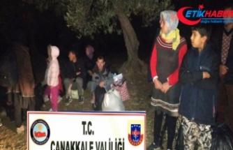 Çanakkale'de 305 mülteci yakalandı