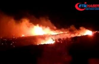 Cezayir'de askeri uçak düştü: 2 ölü