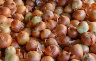 Kayısı ve kuru soğan üretimi 'güldürdü', sarımsak ve Antep fıstığı 'üzdü'