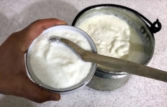 Yoğurt tüketiminin gripten koruduğu tespit edildi