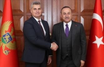Çavuşoğlu, Karadağ Parlamento Başkanı Brajoviç ile görüştü