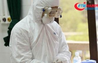 Tayvan'da 2 yeni korona virüsü vakası
