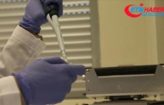 İstanbul'da 4 hastadan alınan Kovid-19 virüsünün genomu dizilendi
