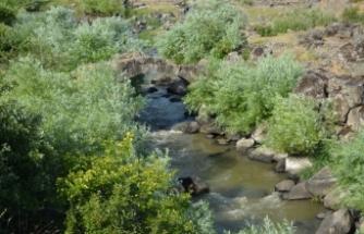 Gaziantep'teki 2 bin yıllık taş köprü turizme kazandırılmayı bekliyor