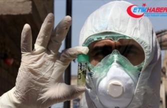 Irak'ta Kovid-19 nedeniyle son 24 saatte 67 kişi hayatını kaybetti