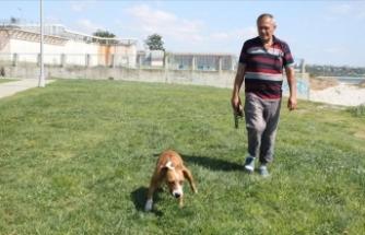 Felçli köpeğine her gün 2 saat antrenman yaptırıyor