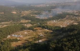 İzmir'de ormanlık alanda yangın