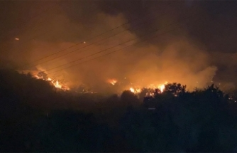 Hatay'daki yangında evleri yanmasın diye gözyaşlarıyla dua ettiler