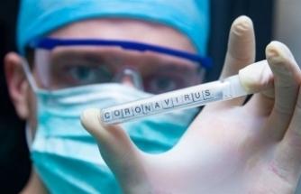 """Japon araştırmacılar: """"Covid-19 insan cildinde 9 saat yaşıyor"""""""