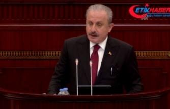 Şentop: Kafkasya'daki çözümsüzlük Ermenistan'ın işgali sürdükçe devam edecektir