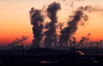 Hava kirliliğinin göz sağlığı üzerinde olumsuz etkilerine rastlandı