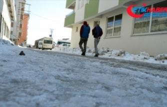 Doğu Anadolu'nun en soğuk kenti sıfırın altında 23 dereceyle Ağrı oldu