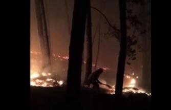Kastamonu'da orman yangını: Ekipler müdahale ediyor