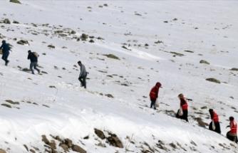 Ağrı'da yabani hayvanlar için karlı dağlara yem bırakıldı