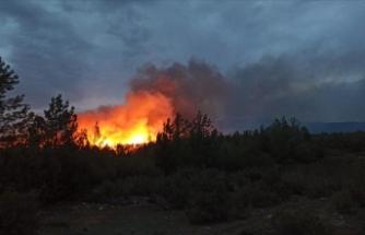 Muğla'nın Menteşe ve Kavaklıdere ilçelerinde çıkan orman yangınları söndürüldü
