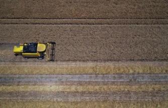 Tarımsal girdi fiyat endeksi şubatta arttı