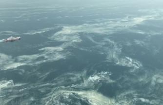 Deniz salyası ile nefes kesen mücadele