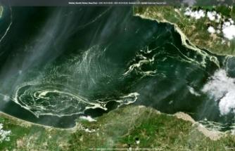 Marmara denizini saran deniz salyaları uydudan bile görüldü