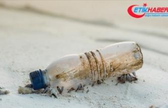 İçinde not bulunan plastik şişenin Atlas Okyanusu'nu geçtiği tahmin ediliyor