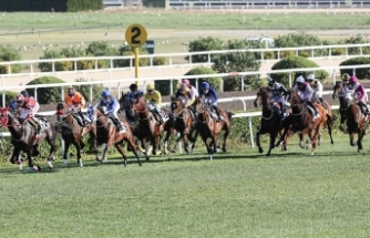 Türk at yarışçılığı derbi için geri sayıyor