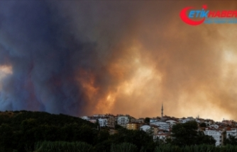 AFAD: Manavgat'taki yangında 3 vatandaşımız hayatını kaybetti