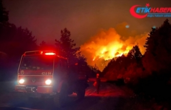 Akseki'deki orman yangınında 1 kişi hayatını kaybetti